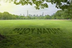 Appréciez la nature se connectent l'herbe photos libres de droits