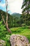 Appréciez la vue du lac rouge Roumanie photo libre de droits
