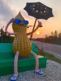 appréciez le coucher du soleil Image stock