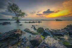 Appréciez le coucher du soleil au bord de la roche photos libres de droits