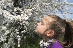 Appréciez le temps de printemps photos stock