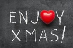 Appréciez Noël photos stock