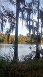 Appréciez un jour par le lac photographie stock libre de droits