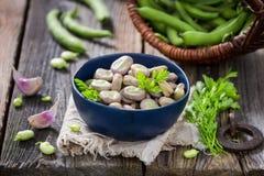 Appréciez vos fèves bouillies avec l'ail et le persil frais image libre de droits
