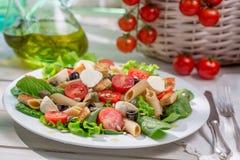 Appréciez votre salade de ressort image stock