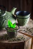 Appréciez votre thé vert images stock