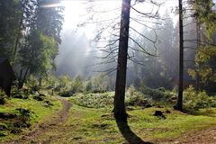 Appréciez votre voyage avec des montagnes de Carpathiens, beauté du village photographie stock