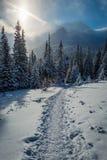 Appréciez votre voyage d'hiver aux montagnes de Tatras, Pologne image libre de droits