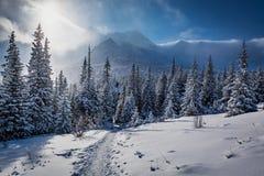 Appréciez votre voyage d'hiver en montagnes de Tatras image stock