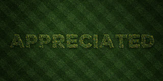 APPRECIATED - fresh Grass letters with flowers and dandelions - 3D rendered royalty free stock image Royalty Free Stock Photos