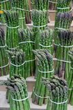 Bunches of Asparagus ready for sale. royalty free stock image
