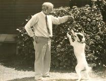 Apprendimento del trucco nuovo del cane Fotografie Stock Libere da Diritti