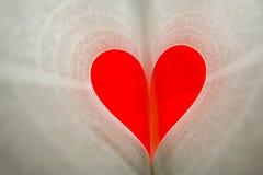 Apprendimento di amore Fotografie Stock