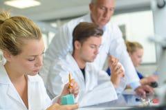 Apprendisti che lavorano nel laboratorio del ` s del dentista Fotografia Stock