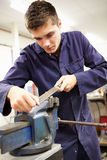 Apprentice Engineer Working On Factory Floor Stock Images