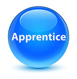 Apprentice glassy cyan blue round button Royalty Free Stock Images