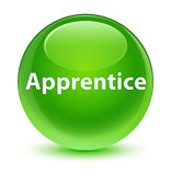 Apprentice glassy green round button Royalty Free Stock Photos