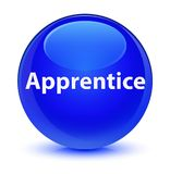 Apprentice glassy blue round button Stock Photography