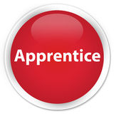 Apprentice premium red round button Royalty Free Stock Image