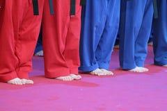 Apprentissage de Kung Fu photo libre de droits