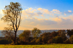 Approach of Autumn Royalty Free Stock Photo