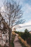 Approach. The path approaching Santa Maria della Pietà, the last tree before the Italian treeline, 1,460 metres above sea level Stock Photo