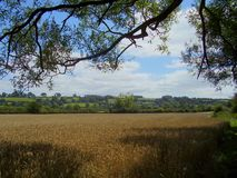 Approaching the Cotswolds village of Old Sodbury. royalty free stock photo