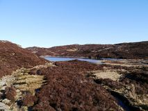 Approaching Dock Tarn, Lake District. Dock Tarn in early spring surrounded by heather stock photography