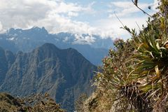 Approaching the peak of Machu Picchu Mountain 04 royalty free stock photography