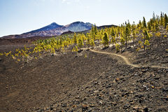 Approaching Pico Vieho and Mount Teide from western flank Royalty Free Stock Image