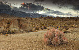 Approaching storm on Alabama Hills Stock Images