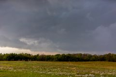 Approaching storm in Kansas. With a field of white wildflowers in the foreground Stock Photo