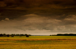Approaching thunderstorm on background fields with harvest Royalty Free Stock Photos