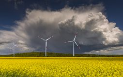 Approaching thunderstorm to rapeseed field, Europe. Concept of eco-tourism that is targeted at human health maintenance. Image slightly toned for retro style Stock Image