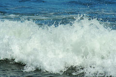 Approaching wave. Wave, Brookings, Oregon Royalty Free Stock Images