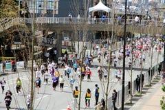 Approcahing η γραμμή τερματισμού του τρεξίματος ήλιων του Βανκούβερ του 2013 Στοκ Εικόνες