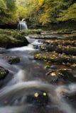 Approche de cascade Photographie stock libre de droits