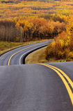 approching的白杨木森林高速公路 免版税库存照片