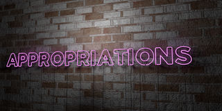 APPROPRIATIONS - Glowing Neon Sign on stonework wall - 3D rendered royalty free stock illustration Stock Photography
