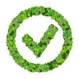 Approuvé, correct, comme, signe d'eco fait à partir des feuilles vertes 3d rendent Images stock