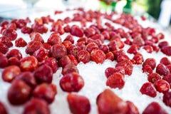Approvisionnement (fraise fraîche et juteuse sur la glace) Images stock