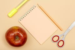 Approvisionnements d'école Apple, stylo de feutre, carnet, crayon de couleur et sci Image stock