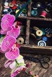 Approvisionnements et orchidée de couture Photographie stock libre de droits