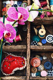 Approvisionnements et orchidée de couture Photographie stock