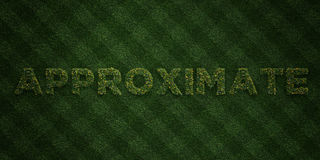 APPROXIMATE - fresh Grass letters with flowers and dandelions - 3D rendered royalty free stock image Stock Image