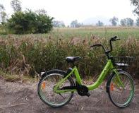 Apps partageant le vélo images libres de droits