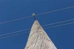 Appui de ligne électrique Photo libre de droits