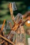 Appui ornemental des branches utilisées pour les verres et la bouteille Images libres de droits