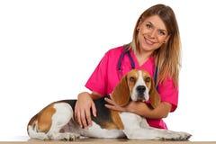 Appuntamento al veterinario fotografie stock