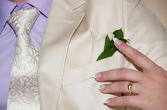 Appuntando lo sposo con il boutonniere fiorisce prima del ceremo di nozze Immagine Stock